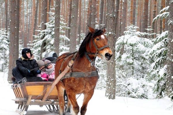 Susiec - Kuligi zimą