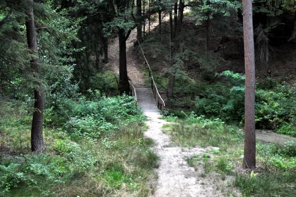 Susiec - trasa szlaku